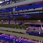 Impressive vertical farming project